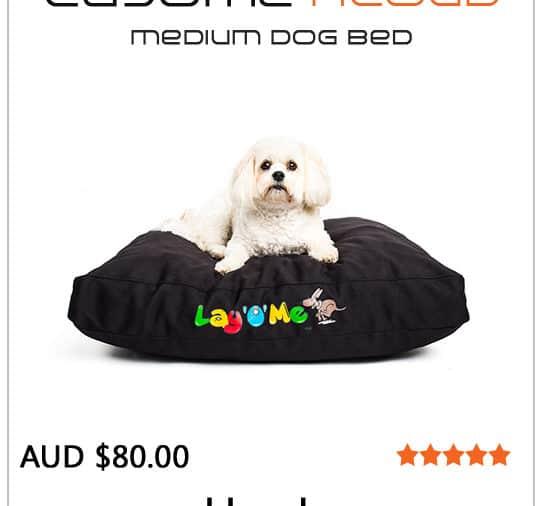 buy dog bed medium