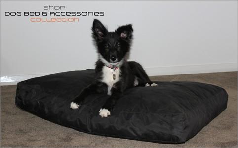 buy foam dog beds