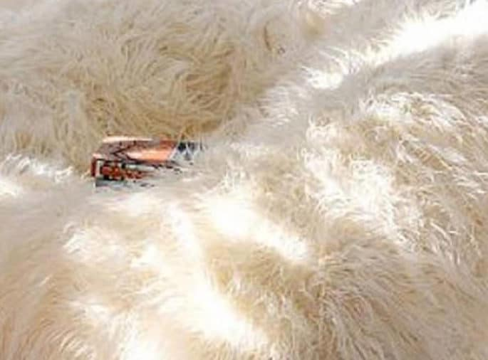 Deluxe White Fur Bean Bag